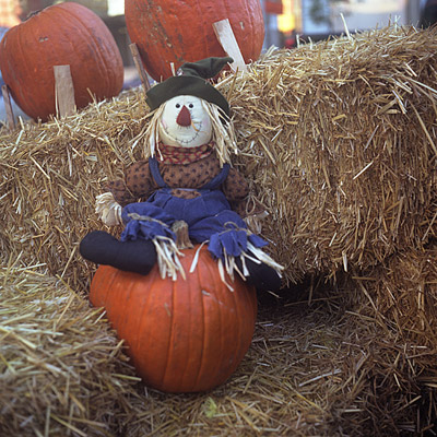 halloween leftover #1