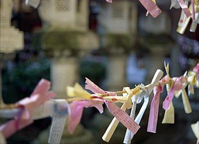 pastel wish