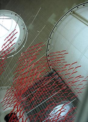 red boomerangs