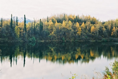 autumn reflection #1