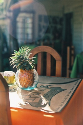 pineapple in the bowl