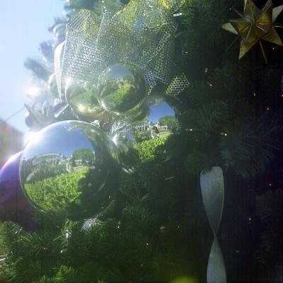 me on christmas tree