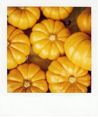 belated halloween theme #2