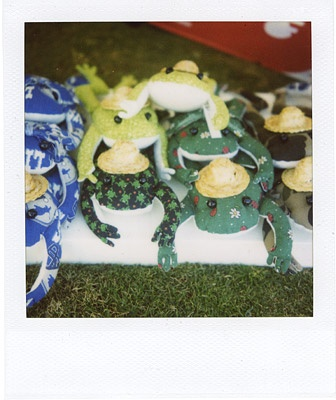 frogs wearing straw hats