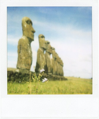 flower by the moai #2