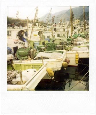 fishing port #1