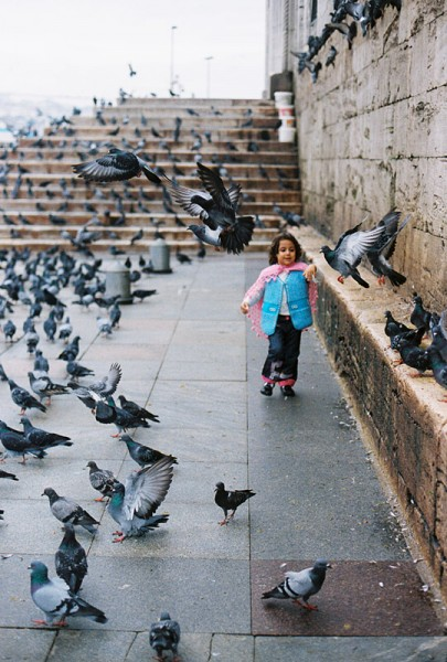 pigeons and a girl