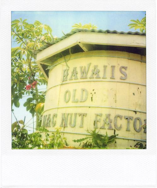 Hawaii's Old Mac Nut Factory