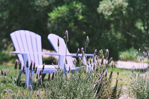 Lavender + Chairs