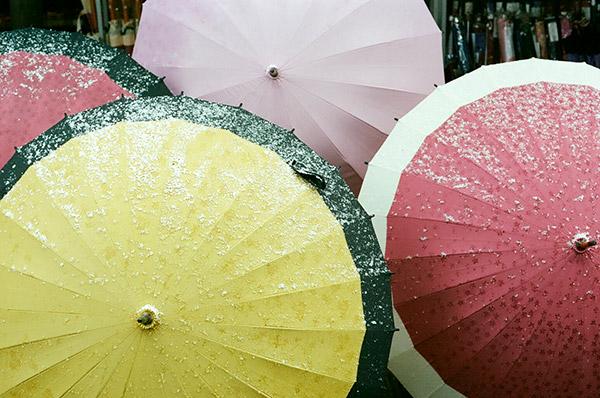 snow on umbrellas
